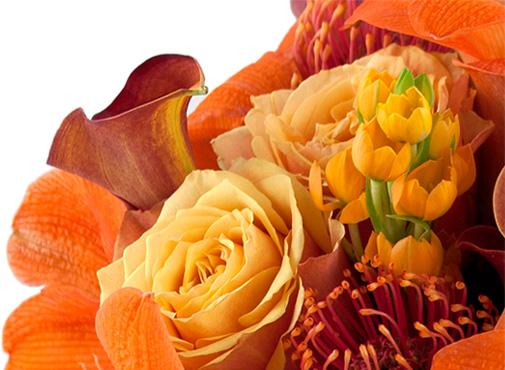 University Floral Design About Us 212 673 5004 51 University